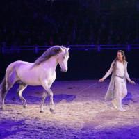 EQUITANA - фото IMG_1828-200x200, Новости , конный журнал EquiLIfe