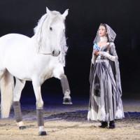 EQUITANA - фото IMG_1933-200x200, Новости , конный журнал EquiLIfe