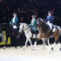 EQUITANA - фото IMG_2069-200x200, Новости , конный журнал EquiLIfe