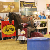 EQUITANA - фото IMG_2468-200x200, Новости , конный журнал EquiLIfe