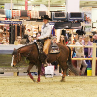 EQUITANA - фото IMG_2499-200x200, Новости , конный журнал EquiLIfe