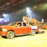 EQUITANA - фото IMG_2784-200x200, Новости , конный журнал EquiLIfe