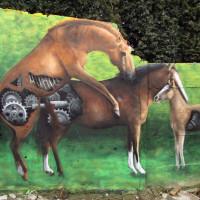 Уличный художник Cee Pil - фото 11157441_10153226929913389_7784514663312426639_o-200x200, главная Фото , конный журнал EquiLIfe