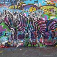 Уличный художник Cee Pil - фото 13652910_10154278345138389_8345823941221522986_o-200x200, главная Фото , конный журнал EquiLIfe
