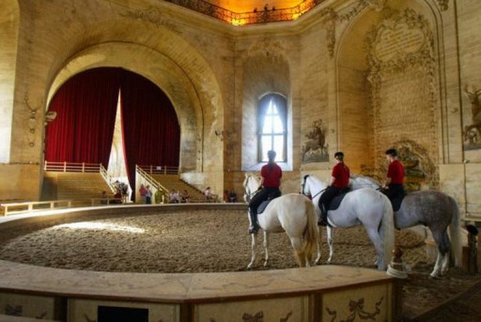 Grandes Écuries - Живой Музей Лошади - фото 138, главная Конные истории Конюшня События Фото , конный журнал EquiLIfe