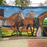 Уличный художник Cee Pil - фото 14711542_10154574235148389_14212456543530349_o-200x200, главная Фото , конный журнал EquiLIfe
