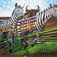Уличный художник Cee Pil - фото 23405757_10155775163313389_1620184589232577512_o-200x200, главная Фото , конный журнал EquiLIfe