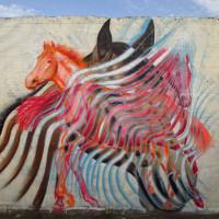 Уличный художник Cee Pil - фото 30073416_10156218784803389_1500331124780764180_o-200x200, главная Фото , конный журнал EquiLIfe