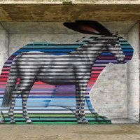 Уличный художник Cee Pil - фото 30943642_10156240468493389_8353910756477423829_o-200x200, главная Фото , конный журнал EquiLIfe