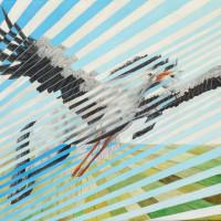 Уличный художник Cee Pil - фото 40361938_10156544242818389_892583457824178176_o-200x200, главная Фото , конный журнал EquiLIfe