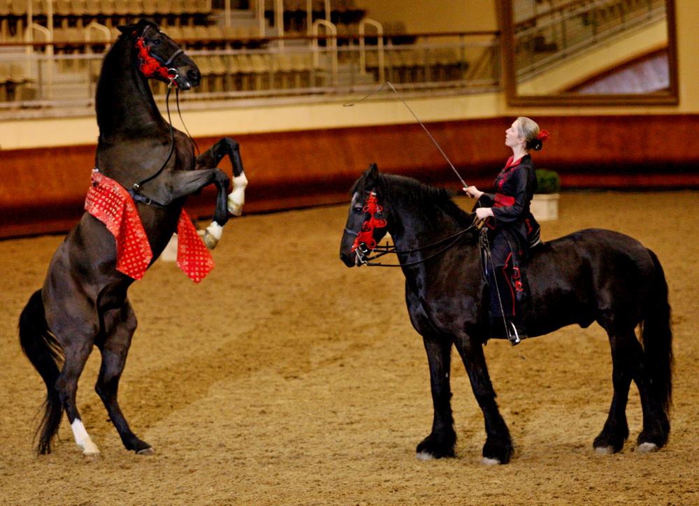 Интервью с Sophie Bienaimé, директором Больших конюшен замка Шантийи - фото Jerzy-Bukajlo-2009-SAUMUR-OW7W7021, главная Интервью , конный журнал EquiLIfe