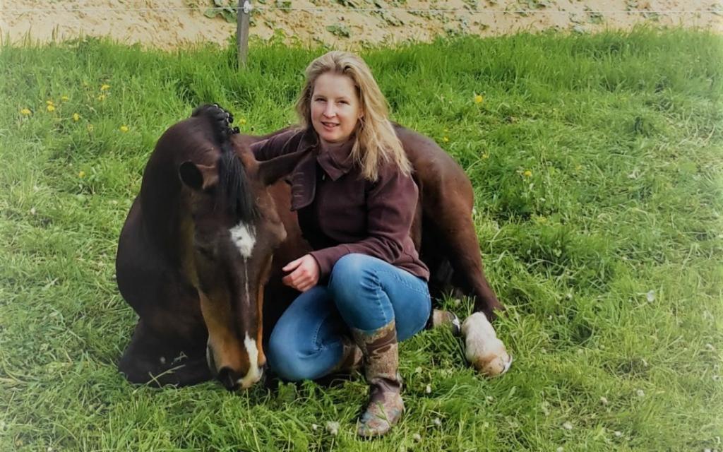 Можно ли содержать спортивных лошадей в активной конюшне? - фото 31-1024x640, главная Содержание лошади , конный журнал EquiLIfe
