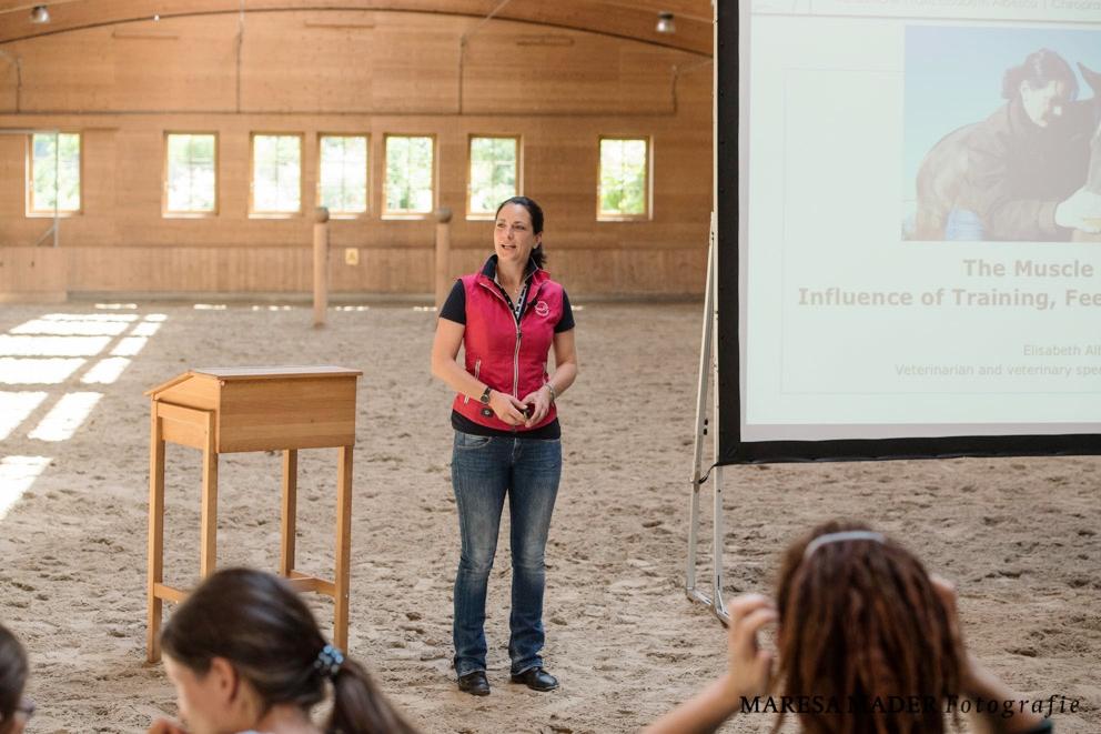 Программа семинара Ани Беран 22-27 июля 2019 - фото beran-workshop-2018-3-13, главная , конный журнал EquiLIfe