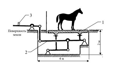 Взвесить лошадь на весах. Весы для лошади - фото , главная Рацион Содержание лошади , конный журнал EquiLIfe