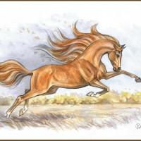Волшебные лошади Оксаны Кукс - фото 0F4ih3Ib2GU-200x200, главная Фото , конный журнал EquiLIfe