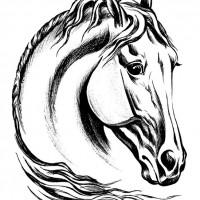 Волшебные лошади Оксаны Кукс - фото 0b6f100f-200x200, главная Фото , конный журнал EquiLIfe