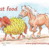 Карикатуры Papírmusztáng - фото 10414837_470545549755072_1036688402618909877_n-200x200, главная Фото , конный журнал EquiLIfe