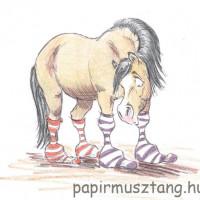Карикатуры Papírmusztáng - фото 163381_205489672927329_1694786985_n-200x200, главная Фото , конный журнал EquiLIfe