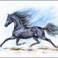 Волшебные лошади Оксаны Кукс - фото 1FkRMnqmcQ8-200x200, главная Фото , конный журнал EquiLIfe