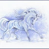 Волшебные лошади Оксаны Кукс - фото 1I5pTmZSNYY-200x200, главная Фото , конный журнал EquiLIfe