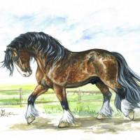Волшебные лошади Оксаны Кукс - фото 1cebdbb9-200x200, главная Фото , конный журнал EquiLIfe