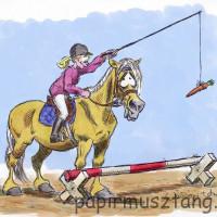 Карикатуры Papírmusztáng - фото 206787_181915321951431_16532199_n-200x200, главная Фото , конный журнал EquiLIfe