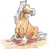 Карикатуры Papírmusztáng - фото 269182_216558068487156_121736941_n-200x200, главная Фото , конный журнал EquiLIfe