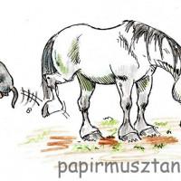 Карикатуры Papírmusztáng - фото 29003_206820549460908_1581015037_n-200x200, главная Фото , конный журнал EquiLIfe