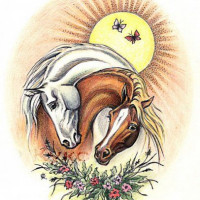 Волшебные лошади Оксаны Кукс - фото 2e54fa29e408679ea3c97e4122f73200-horse-drawings-white-horses-200x200, Recommendation Фото , конный журнал EquiLIfe