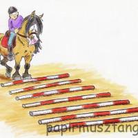 Карикатуры Papírmusztáng - фото 394858_199591126850517_414556130_n-200x200, главная Фото , конный журнал EquiLIfe