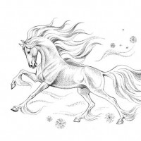 Волшебные лошади Оксаны Кукс - фото 3c48f03a9b083ca76025b2995693d22f-horse-art-equestrian-200x200, главная Фото , конный журнал EquiLIfe