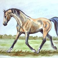 Волшебные лошади Оксаны Кукс - фото 3c765bc5-200x200, главная Фото , конный журнал EquiLIfe