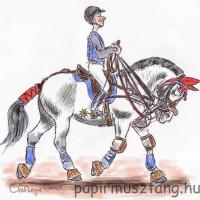 Карикатуры Papírmusztáng - фото 407853_185820768227553_292810567_n-200x200, главная Фото , конный журнал EquiLIfe