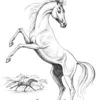 Волшебные лошади Оксаны Кукс - фото 41e22a7f-200x200, главная Фото , конный журнал EquiLIfe