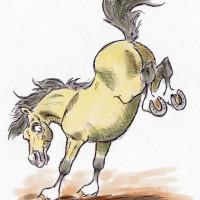 Карикатуры Papírmusztáng - фото 487452_201811443295152_20586456_n-200x200, главная Фото , конный журнал EquiLIfe