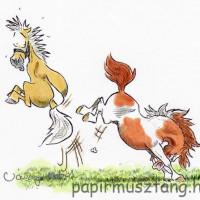 Карикатуры Papírmusztáng - фото 541882_182233935252903_128154034_n-200x200, главная Фото , конный журнал EquiLIfe