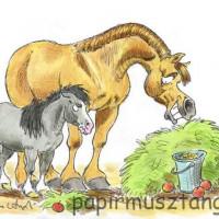 Карикатуры Papírmusztáng - фото 602834_186728461470117_1431005154_n-200x200, главная Фото , конный журнал EquiLIfe