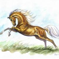 Волшебные лошади Оксаны Кукс - фото 7af716a0-200x200, главная Фото , конный журнал EquiLIfe