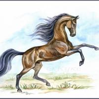 Волшебные лошади Оксаны Кукс - фото 7jJg81CBcXQ-200x200, главная Фото , конный журнал EquiLIfe