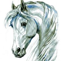 Волшебные лошади Оксаны Кукс - фото 813b839e-200x200, главная Фото , конный журнал EquiLIfe
