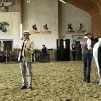 Мариус Шнайдер, классическая выездка, июнь 2019 - фото IMG_3137-200x200, , конный журнал EquiLIfe