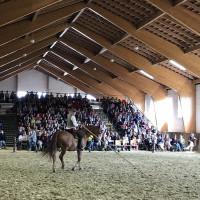 Мариус Шнайдер, классическая выездка, июнь 2019 - фото IMG_3144-200x200, , конный журнал EquiLIfe