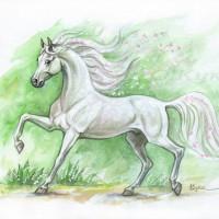 Волшебные лошади Оксаны Кукс - фото QvLs6bGOHxs-200x200, главная Фото , конный журнал EquiLIfe