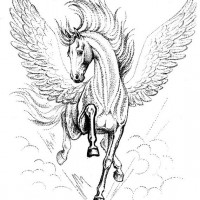 Волшебные лошади Оксаны Кукс - фото RMeutzOj-cg-200x200, главная Фото , конный журнал EquiLIfe