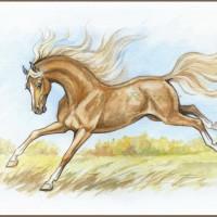 Волшебные лошади Оксаны Кукс - фото S8s0xaBrUwg-200x200, главная Фото , конный журнал EquiLIfe