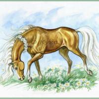Волшебные лошади Оксаны Кукс - фото SqUvYug3lKU-200x200, главная Фото , конный журнал EquiLIfe