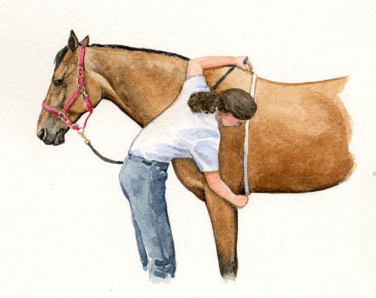 Зачем надо знать ТОЧНЫЙ вес лошади? - фото eb489276703a2b7bf9c1af8fcb3f85dc1, главная Здоровье лошади Содержание лошади , конный журнал EquiLIfe