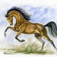 Волшебные лошади Оксаны Кукс - фото eca8ac89-200x200, главная Фото , конный журнал EquiLIfe