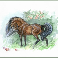 Волшебные лошади Оксаны Кукс - фото f0ff2691-200x200, главная Фото , конный журнал EquiLIfe