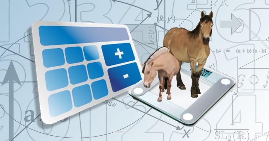 Зачем надо знать ТОЧНЫЙ вес лошади? - фото horse_weight_title_image, главная Здоровье лошади Содержание лошади , конный журнал EquiLIfe
